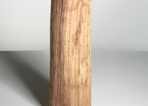 "Image of ""Ramifications II"" sculpture created by splitting tree trunks into sections and reassembling them with staples"