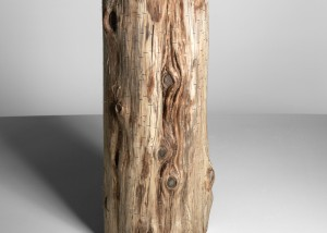 "Image of ""Ramifications III"" sculpture created by splitting tree trunks into sections and reassembling them with staples"