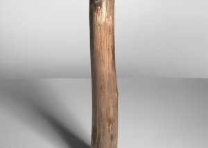 "Image of ""Ramifications IV"" sculpture created by splitting tree trunks into sections and reassembling them with staples"