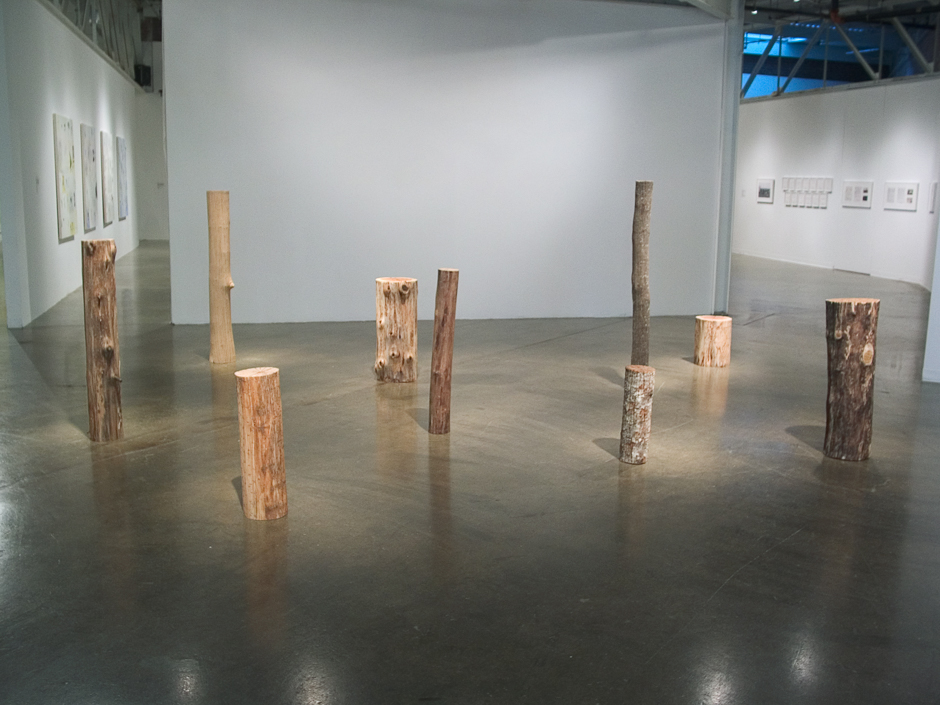 "Image of installation of ""Ramifications Series"" sculptures created by splitting tree trunks into sections and reassembling them with staples"
